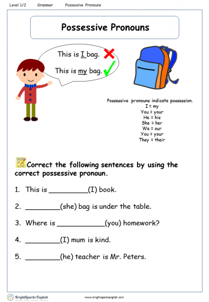 Possessive Pronouns Level 1