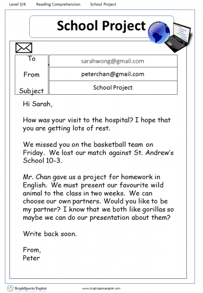 reading comprehension Level 3 School Project