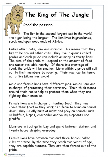 The King of The Jungle Reading Comprehension Worksheet – English ...